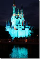 Cinderellas_Castle_Night